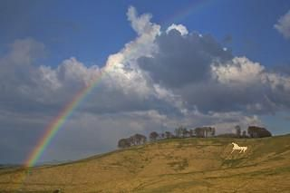 The Cherhill White Horse is one of many attractions which bring visitors from all over the world to Wiltshire