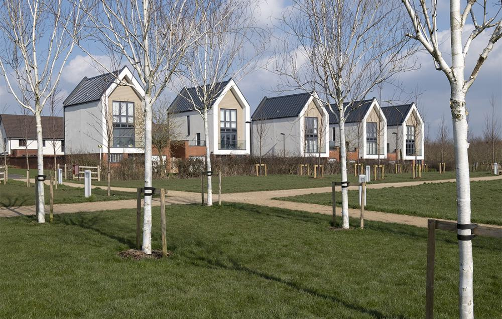 Sainsbury's set to move into Tadpole Garden Village