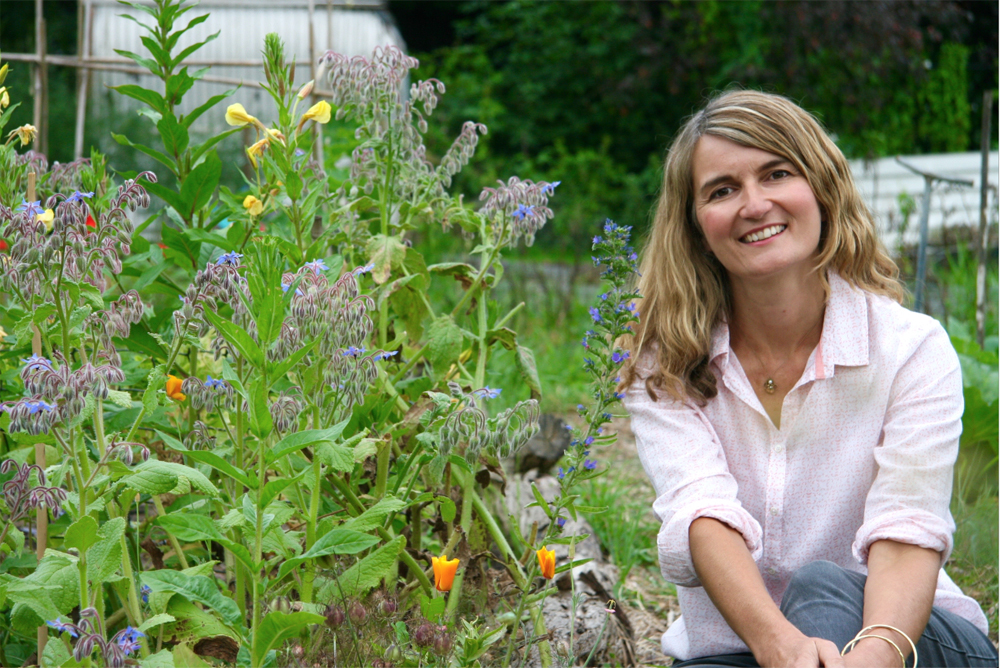 Making Wiltshire gardens havens for bees