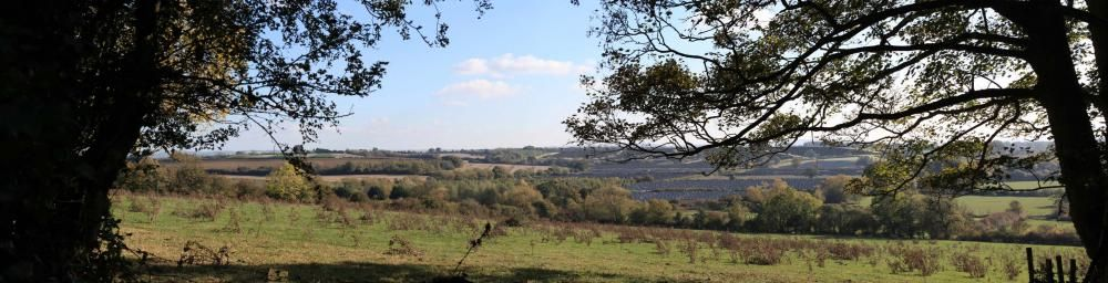Planned site of the solar farm whose backers say will cater for the energy needs of 15,500 homes