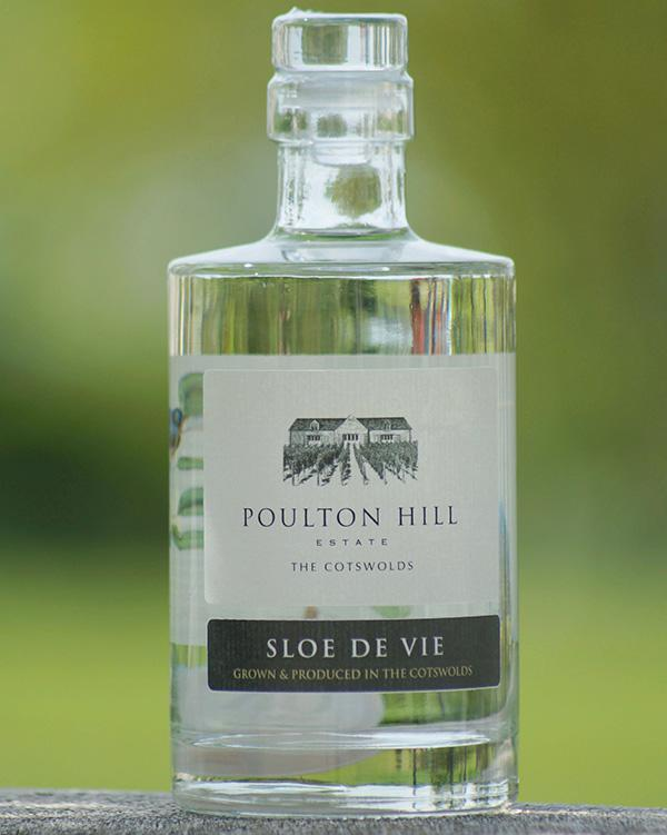 Swindon vineyard's sloe spirit voted best in the UK