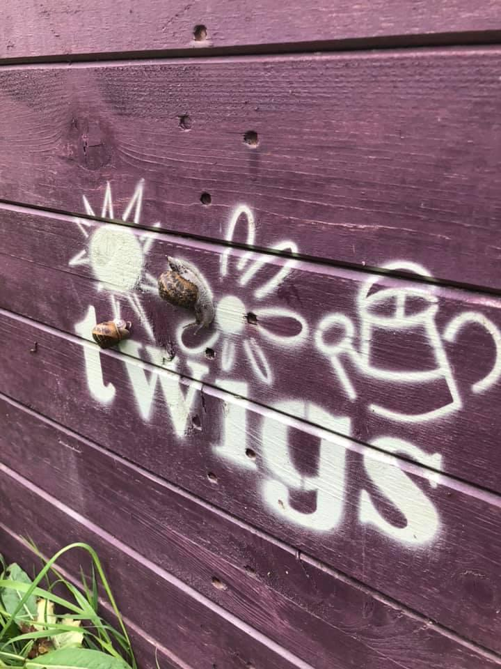 TWIGS Community Garden charity open day next month