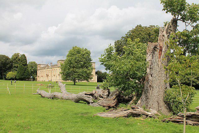 The Friends of Lydiard Park have organised the talks