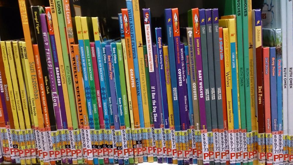 Children aged 0-5 receive over 200 free books at Swindon Stories Christmas giveaway