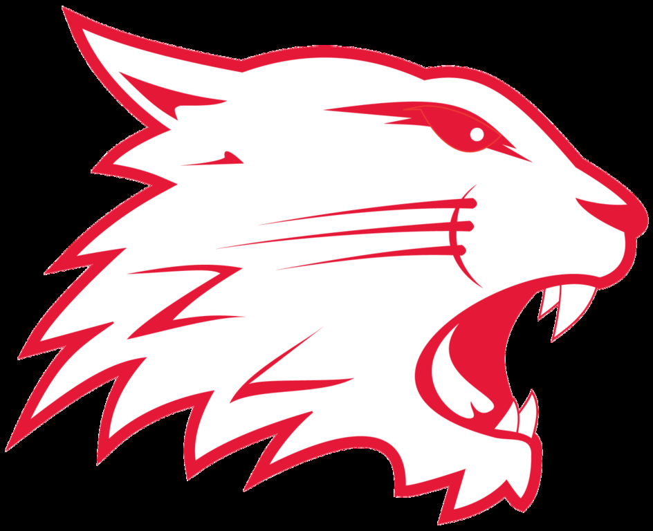Swindon Wildcats in The Community (SWITC) joined forces with Franklin's Food and Arval BNP Paribas Group