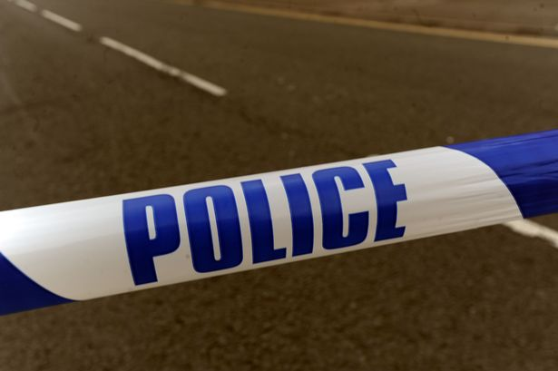Police investigate deliberate torching of two vans