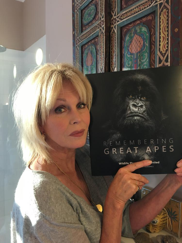 Famous faces help shine a spotlight on the plight of endangered great apes