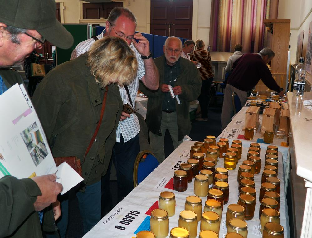 Absolutely buzzing! - Hundreds attend the Wiltshire Bee & Honey Day