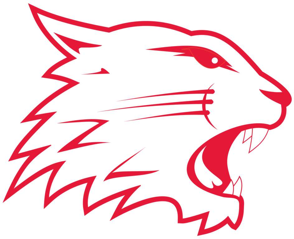 Introducing this season's Swindon Wildcats team